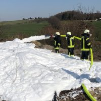 Das Feuer musste gelöscht werden, da nicht nur Grünabschnitt verbrannt wurde.